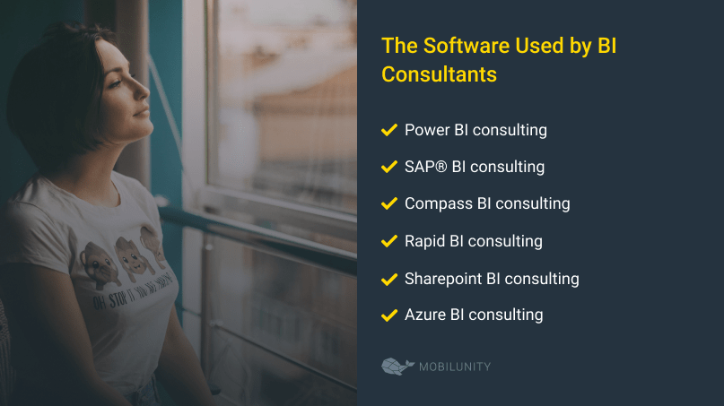 bi consulting software