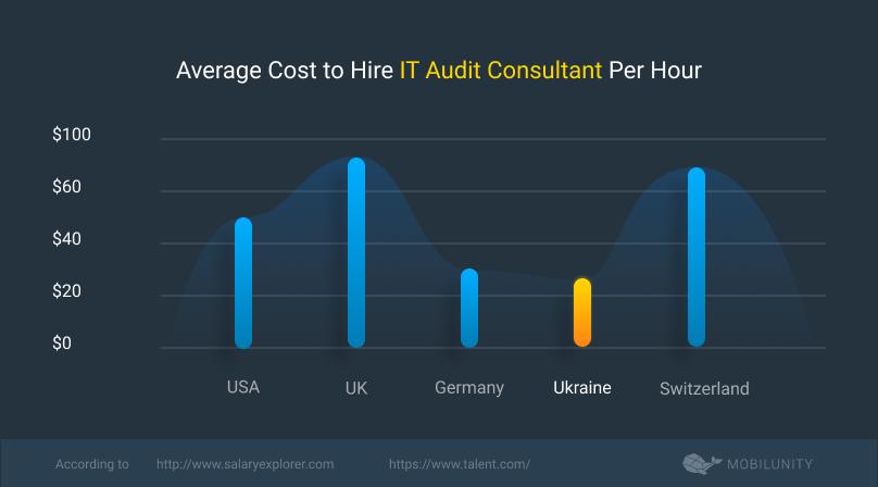 it audit consultant cost