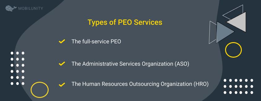 peo software engineering types