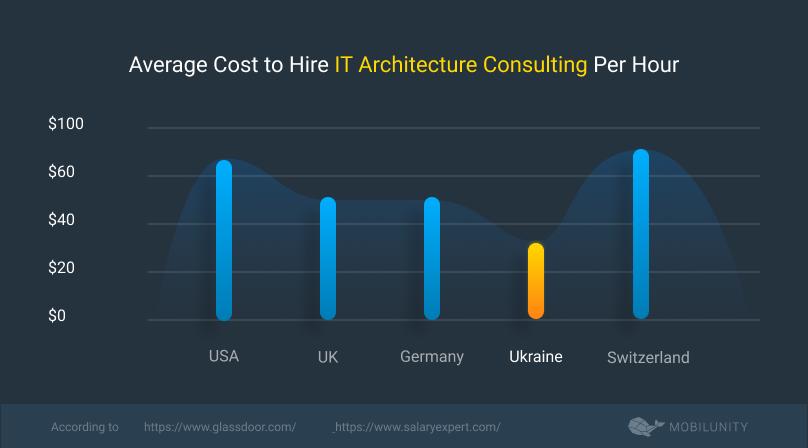 software developer consultant cost