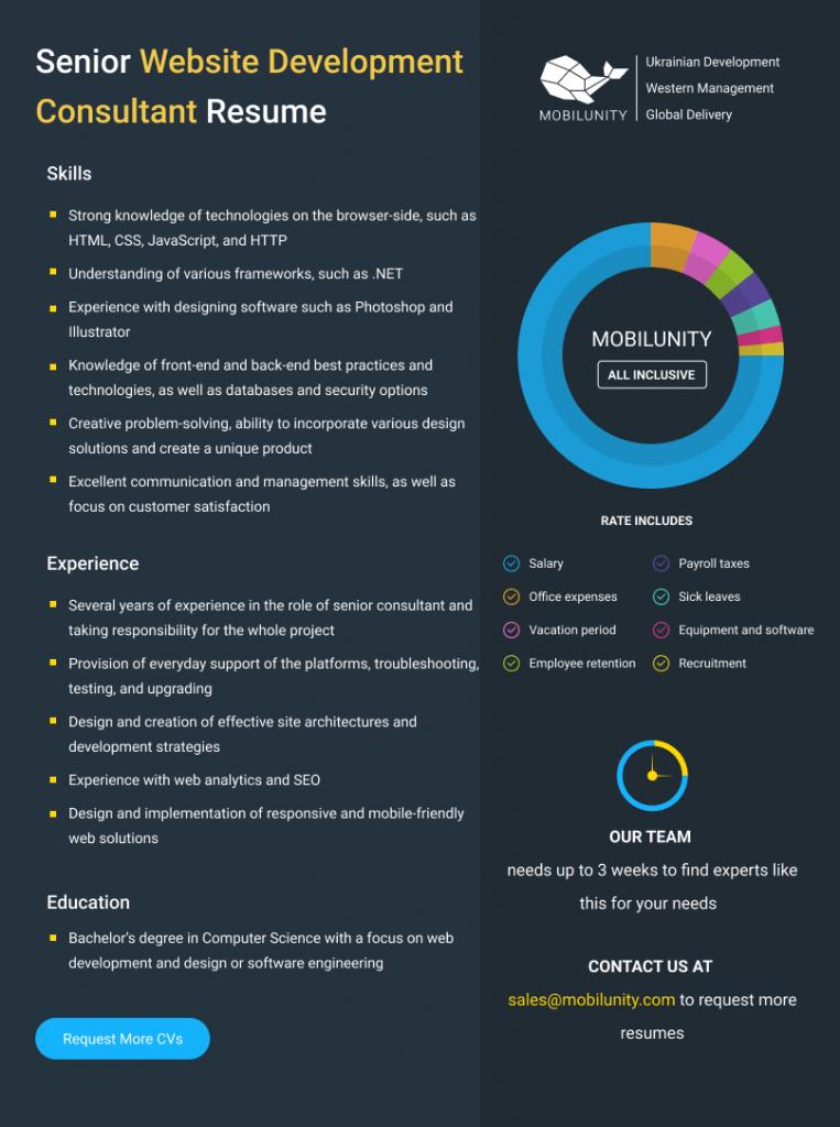 website development consultant resume