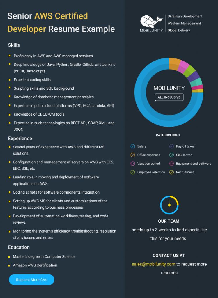 aws certified developer resume example