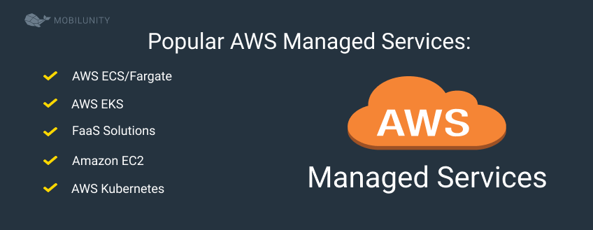 managed aws services for company