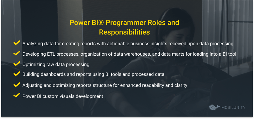 power bi roles and responsibilities