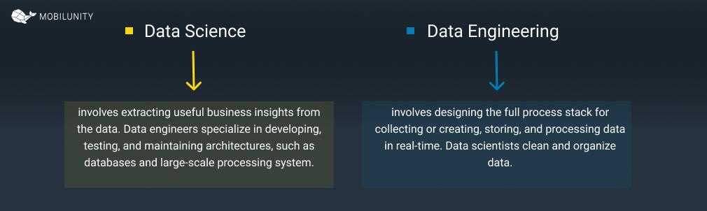 big data engineer vs data scientist