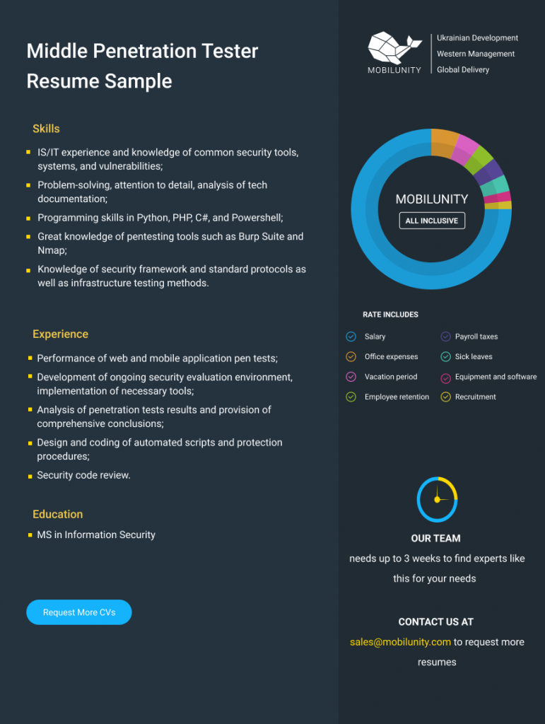 middle pentester resume